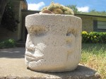 pothead-with-brain-cactus-03